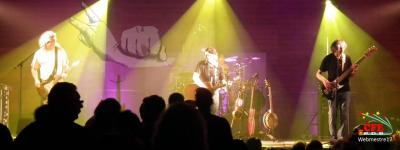Les Binuchards en concert