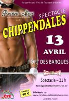 Affiche chippendales web 1
